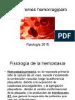 Síndromes hemorragiparo