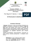 Engenharia de Processos - Introdução à Siderurgia