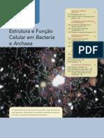 Estrutura e função em bactérias. Microbiologia de Brock, 12ª Edição (Capítulo 4).pdf