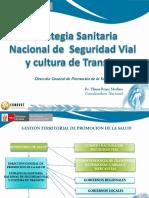 Estrategia Sanitaria de Seguridad Vial y Cultura de Transito