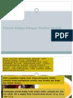 Potensi Kelapa Sebagai Sumber Protein