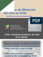 217052909-Procesos-de-obtencion-del-Litio-en-Chile.pptx