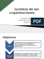 Teoria de La Organizacion