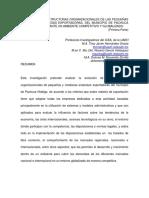 pachuca.pdf