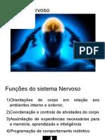 Neuroanatomia Aula 1.2.2