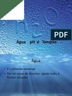 Aula 4 - Água PH e Tampão
