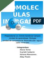 Biomoléculas-inorgánicas (1)