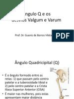 Angulo q