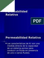 CL-5 Permeabilidad Relativa