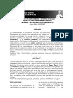 Laboratorio bioquimica-reconocimiento de carbohidratos.docx