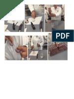Fotos Ultima Practica bioquimica