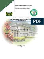 proyecto metodologia.docx