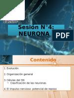 Neurona I 2016.pptx