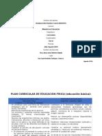 Plan Curricular Educacion Fisica Educacion Basica