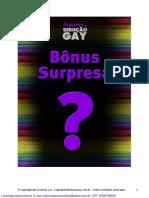 G1 B7 W V12 Mistery Bonus Segredos Da Seducao Gay