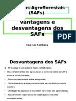 12� Aula - Desvantagens de Sistemas Agroflorestais  (SAFs)-2