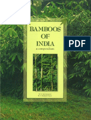 Bamboos of India Web | Bamboo | Seed