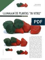 Clonagem de plnatas in vitro - Revista Biotecnologia.pdf