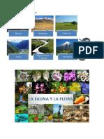 FORMAS DE RELIEVE.docx