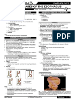 PATHO 4-3 Diseases of the Esophagus