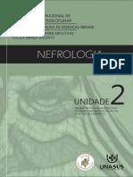 Livro_pdf Nefrologia Multidisciplinar Modulo 3.2