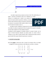 Apunte Matrices