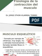 Contraccion Muscular (1)