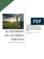 El Fenomeno de Las Tribus Urbanas