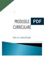produsele curriculare.pdf