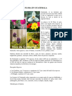 Flora en Guatemala