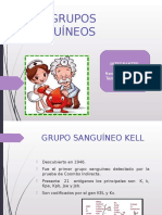 Banco Sangre Otros Grupos s.