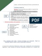 Absceso de Pulmón- Apuntes Habilidades III Parcial