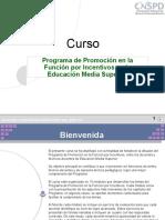Programa Promocion Ms Funcion x Incentivos