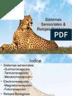 Sistemas Sensoriales y Relojes Biologicos