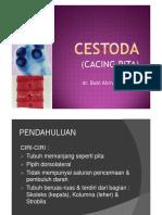 Cestoda PDF