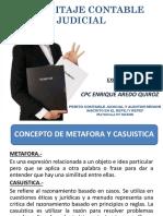 EXPOSICION PERICIA CONTABLE - CPC. ENRIQUE AREDO QUIROZ.pdf