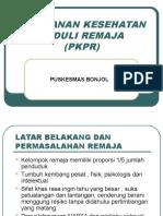 Pengenalan PKPR