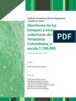 Monitoreo de Bosques Amazonia 2013-Interactivo