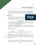 1_CAP_UNO_CLASES_DE_NUMEROS_DEFINITIVO_2_.pdf