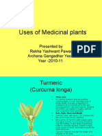 Uses of Medicinal Plants
