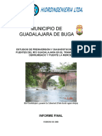 informe final guadalajara FEB 28 2005.pdf