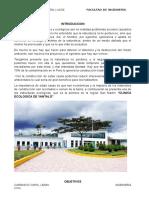 Informe de Yantaló-lenin - Copia