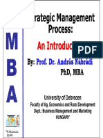 Strategic Mgmt 1