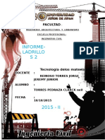 INFORME-LADRILLOS 2