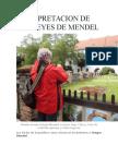 INTERPRETACION DE LAS LEYES DE.docx