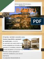 Bambú-tecnologia de Materiales