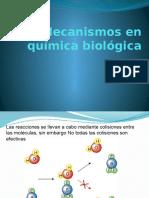 Mecanismos en Química Biológica