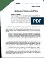 Audiência de Custódia Garantia Do Direito Internacional Público