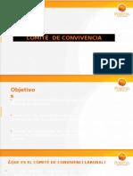 Presentación - Comite de Convivencia Laboral