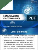Somnabulisme Fix